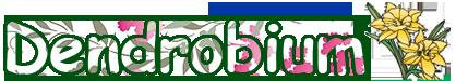 Dendrobium.md - Accesorii floristice / DIY
